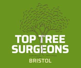 Top Tree Surgeons Bristol Logo