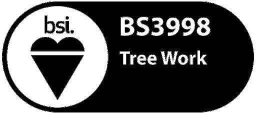 British Standard BS3998 Logo