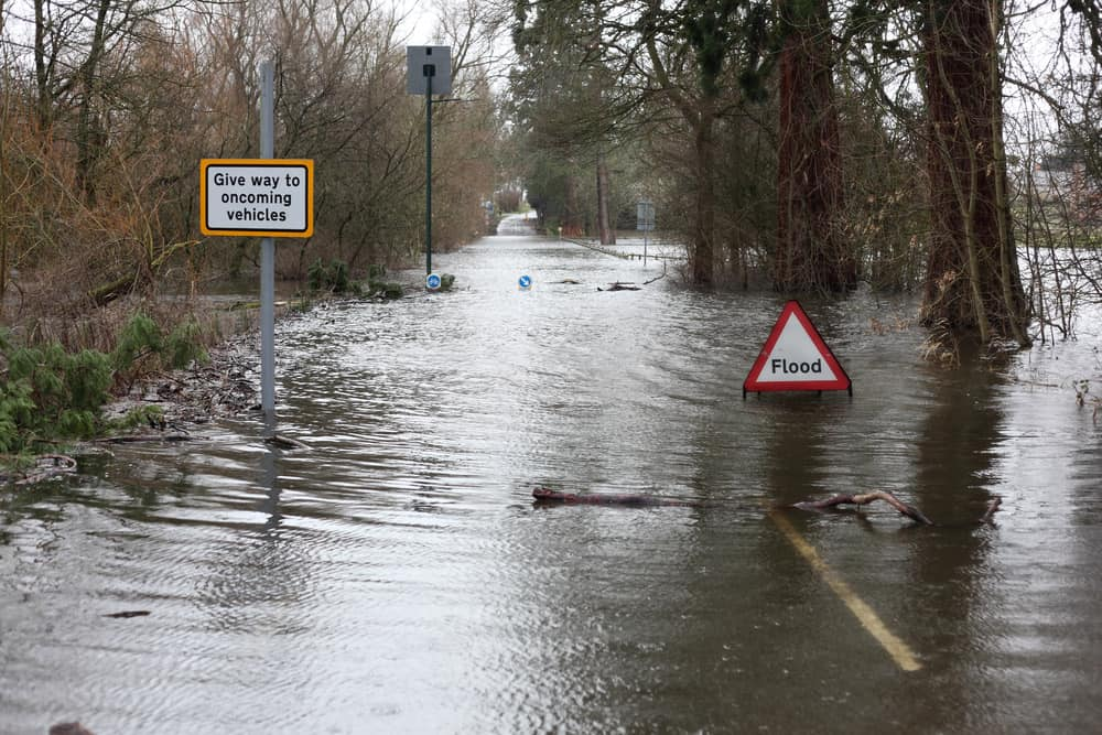 trees in a street in Bristol submerged in water